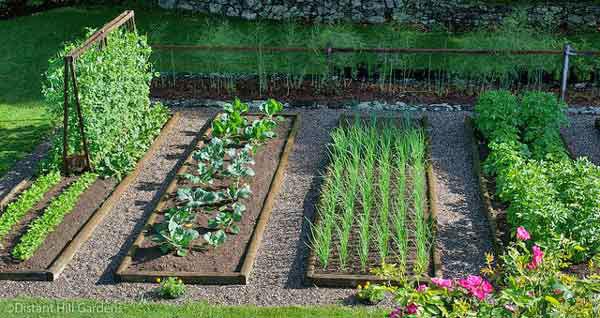 The Garden Prepper