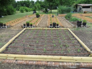 The Best Designing a Basic PVC Home Garden Drip Irrigation