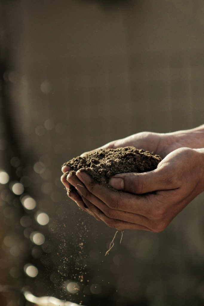 person carrying soil